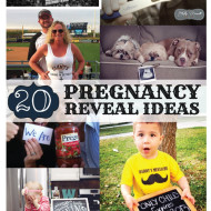 20 Pregnancy Reveal Announcement Ideas